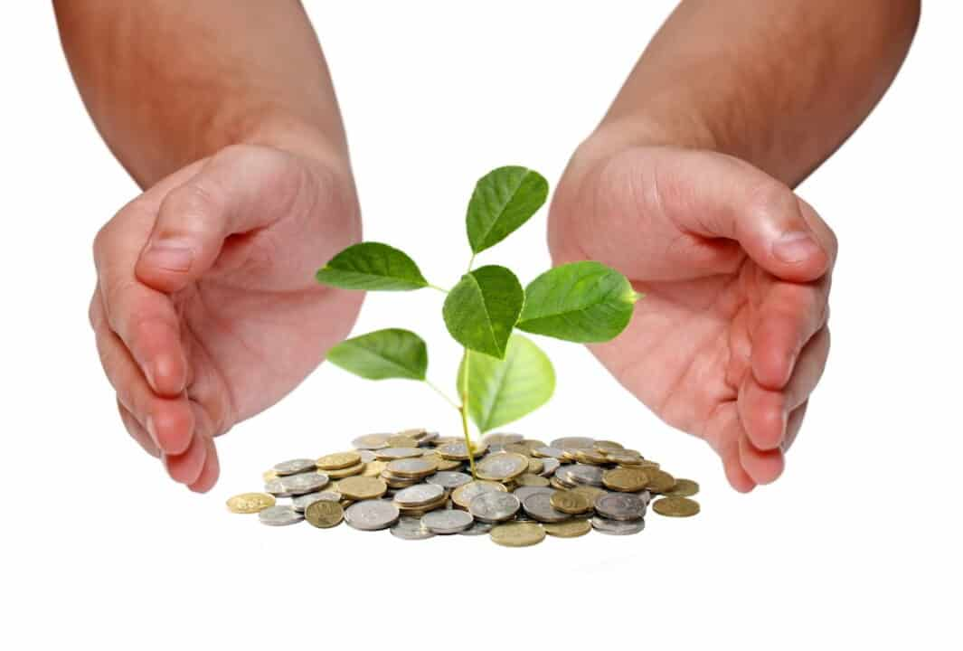 a person's hands around plant growing from the stack of coins